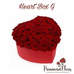 Heart Box G