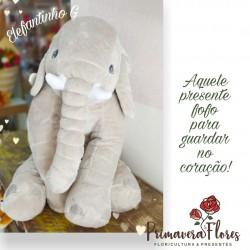 Elefantinho G