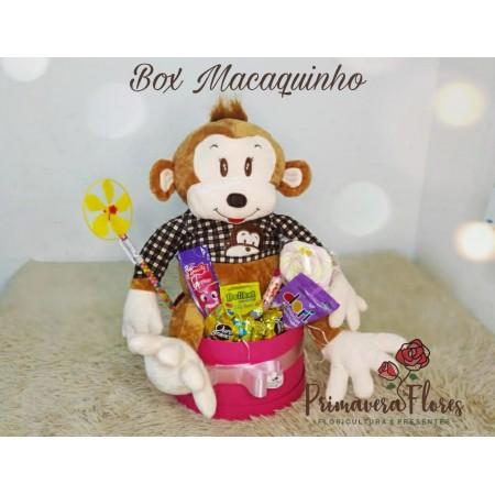 Box Macaquinho