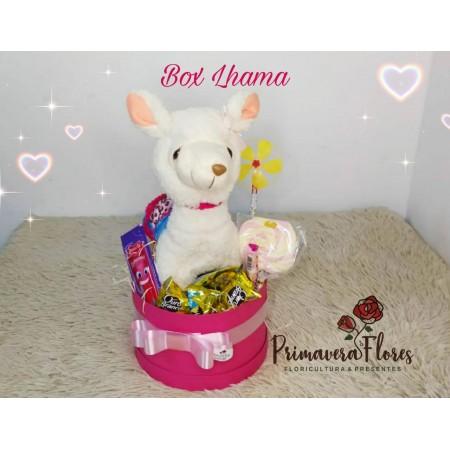 Box Lhama