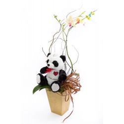 Orquídea Love